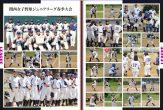 野田レディースP16-P17